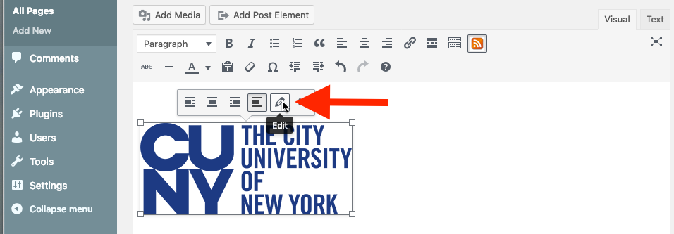 Screen grab showing how to edit an image's default alt-text from within a page or post.