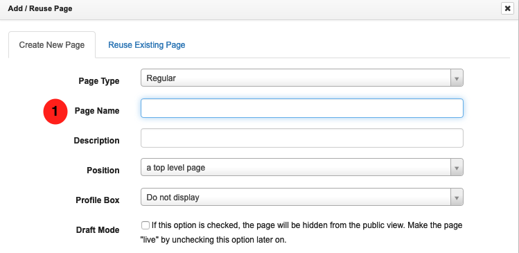Screen grab showing where to place the page title in libguides.