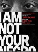 I Am Not Your Negro James Baldwin and Race in America