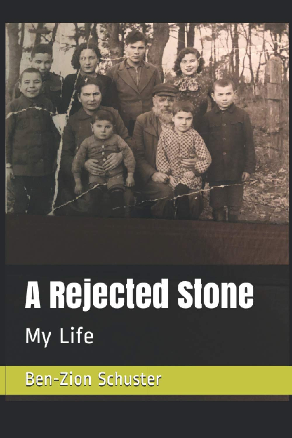 cover of Shapiro, A Rejected Stone: My Life. MDX Publishing, 2020.