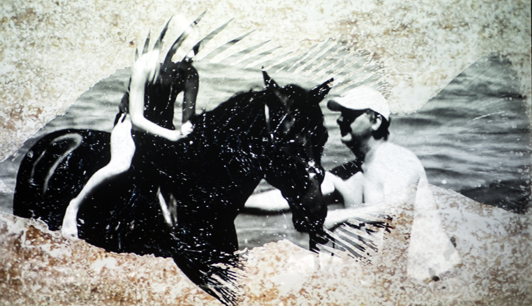 A photo collage of a girl on a horse being wrangled by a man. An image of a fish is imposed on the background.