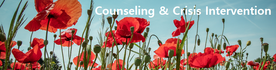 Counseling and Crisis intervention