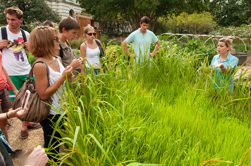 Visitors tour the USDA People's Garden