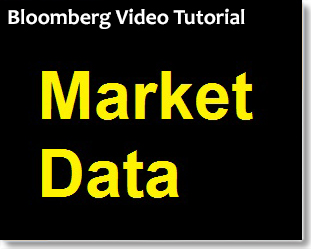 Bloomberg: Finding Market Data