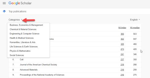 Screen shot of the top 100 publications in Google Scholar