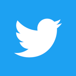 Twitter logo, a white bird on a blue backgound