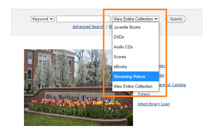 screenshot of library catalog with dropdown menu expanded and streaming video selected