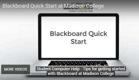 blackboard quick start video