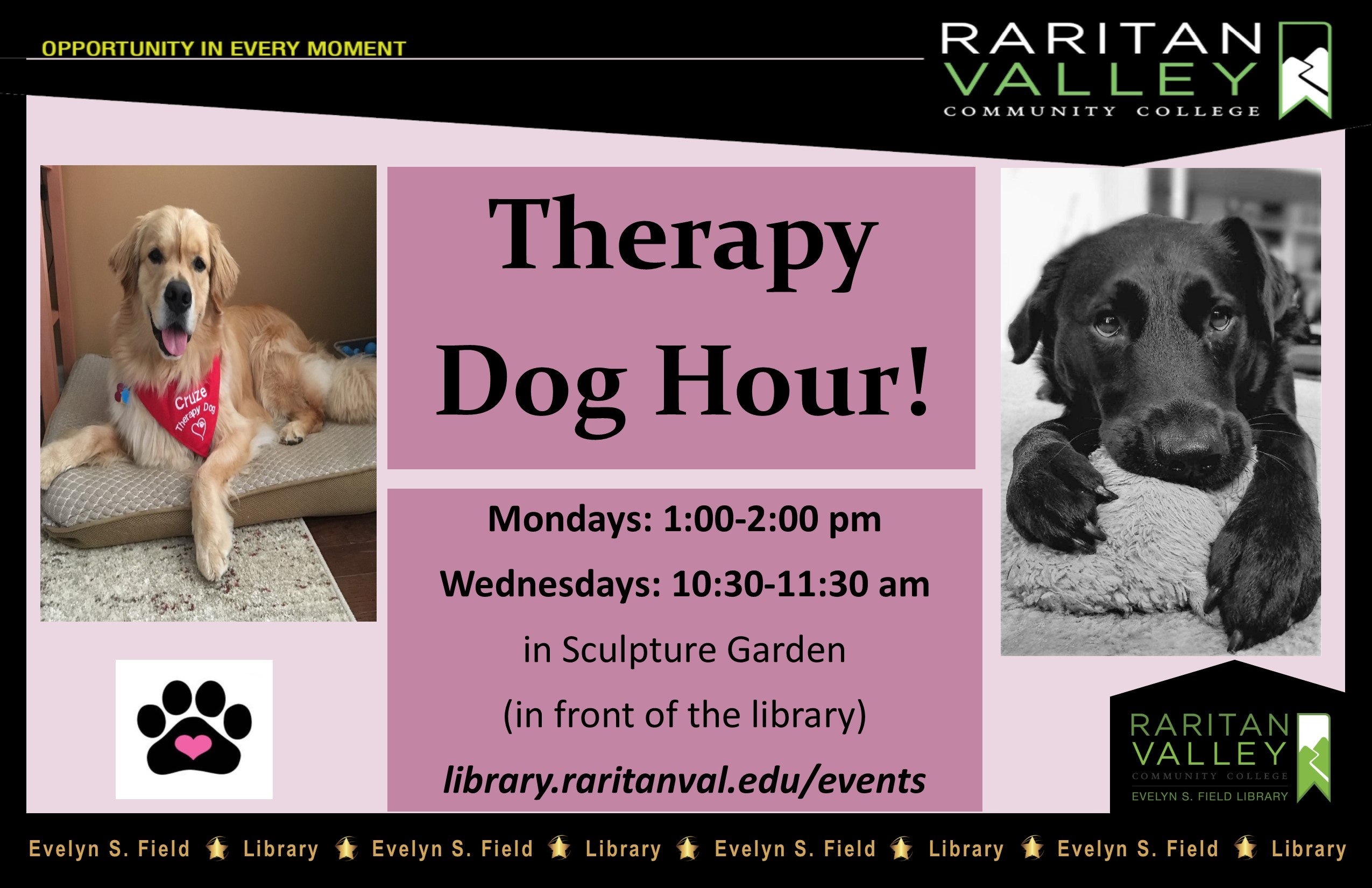 therapy dog hour