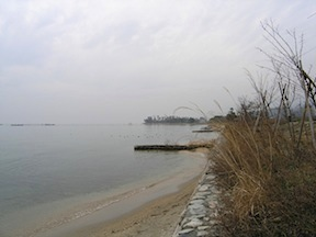 Biwa shore
