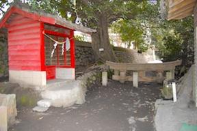 buried torii