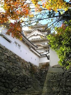 Egret castle