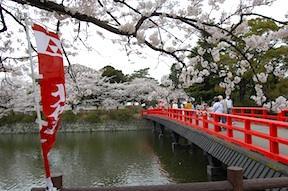 Odawara Castle bridge