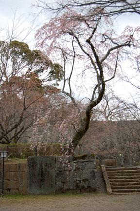 Taketa-Oka Castle Ruins