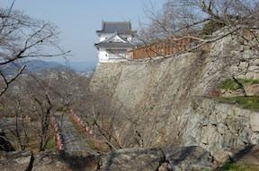 Tsuyama Castle Ruins