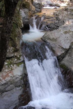 Izu Waterfall Ebi Daru