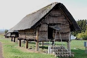 Jomon house
