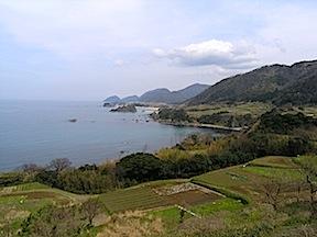 Tango coast