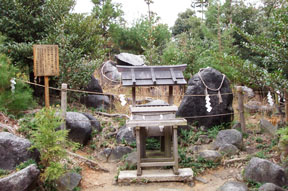 miwa summit
