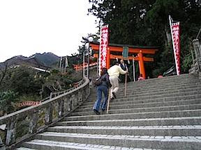 Nachi shrines