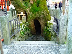 Kusunoki Nachi shrine