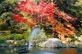 Yahiko pond
