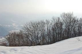 Slopes above Yuzawa