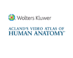 Logo of Acland's online streaming video