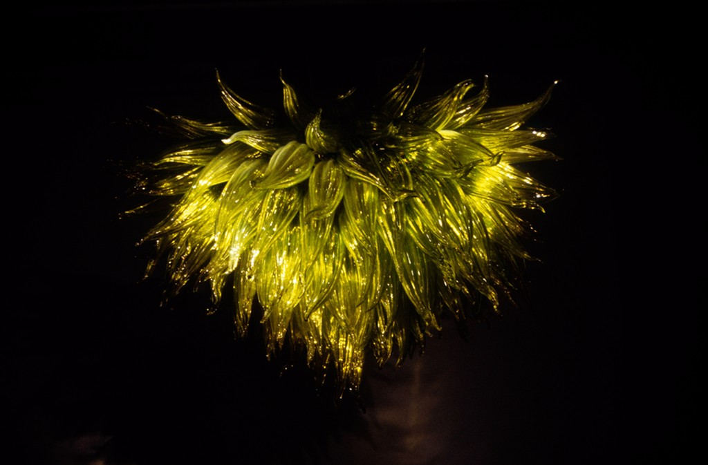 Chartreuse Chandleier by Dale Chihuly