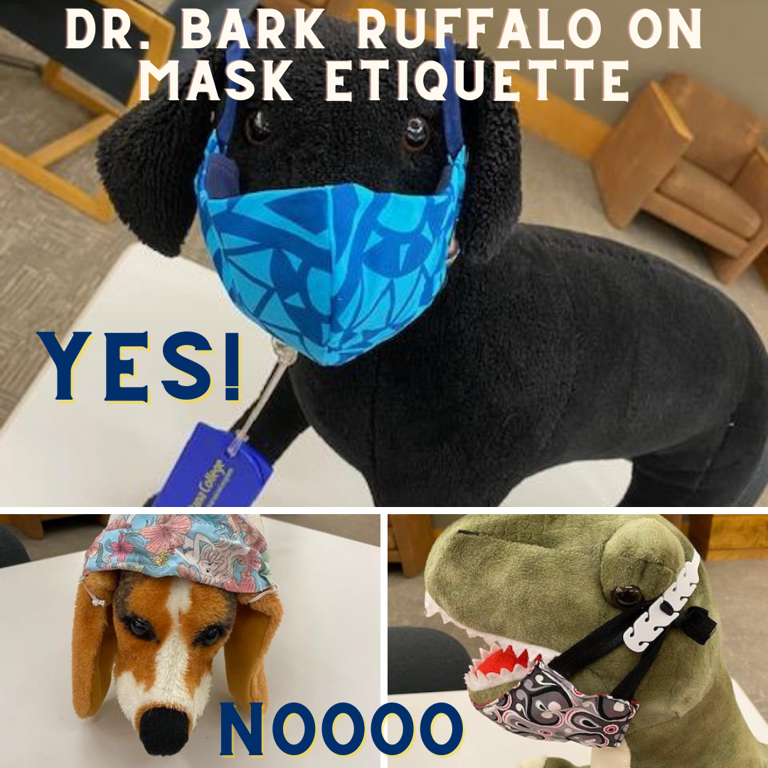 Dr. Bark Ruffalo demonstrates how to wear a mask