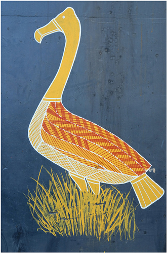 Artwork depicting Magpie Goose standing in grasses