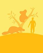 SDWZA Australian Forest Hub