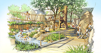 Exhibit illustration, San Diego Zoo Children's Zoo