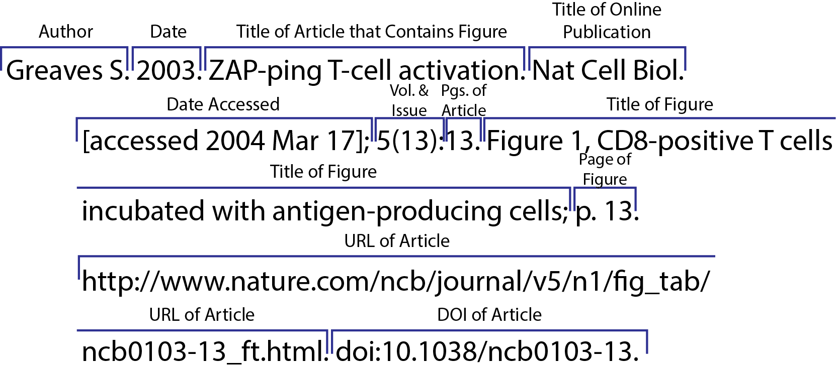 CSE/CBE 8 Name Year Online Figure from Journal Article, Retrieved from a Journal