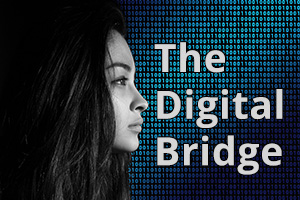 Link to the Digital Bridge Blog