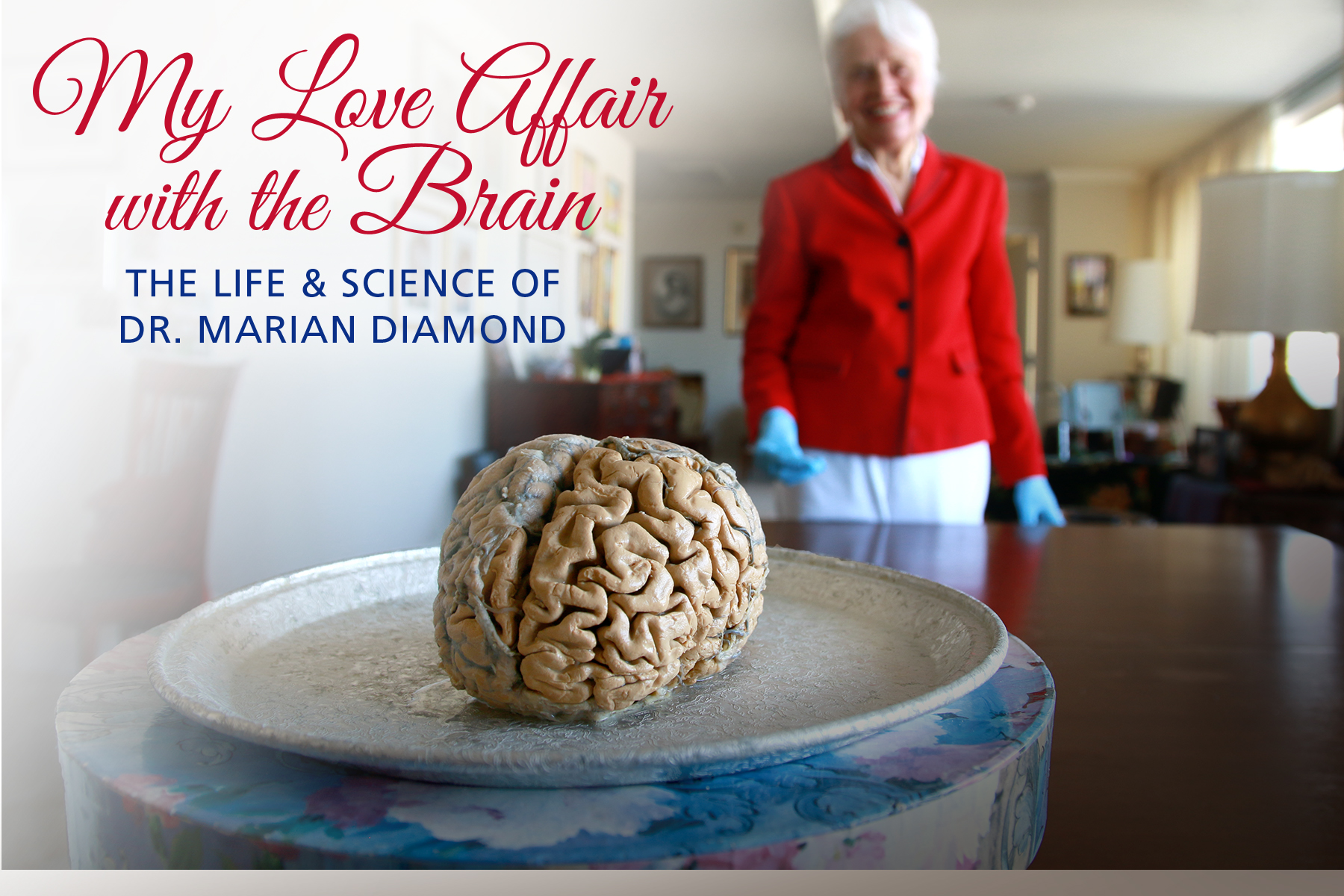 Brain on a plate, My Love Affair with the Brain: The Life and Science of Dr. Marian Diamond