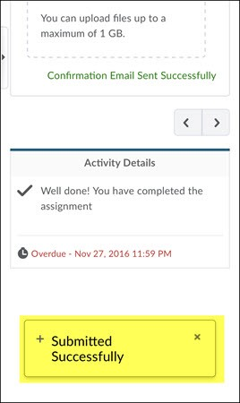 Submit an assignment screen Submitted Successfully