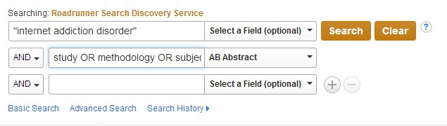 Screenshot of Roadrunner Advanced Search with example search terms.