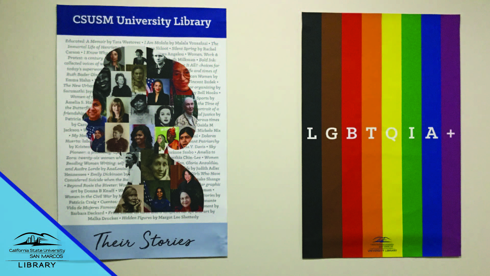 Library Posters Zoom Background