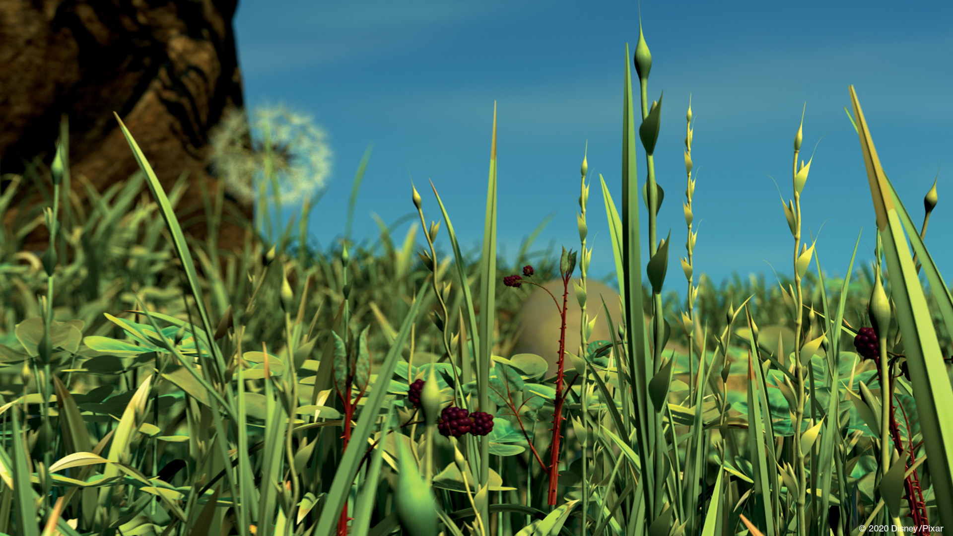 Zoom Background A Bugs Life