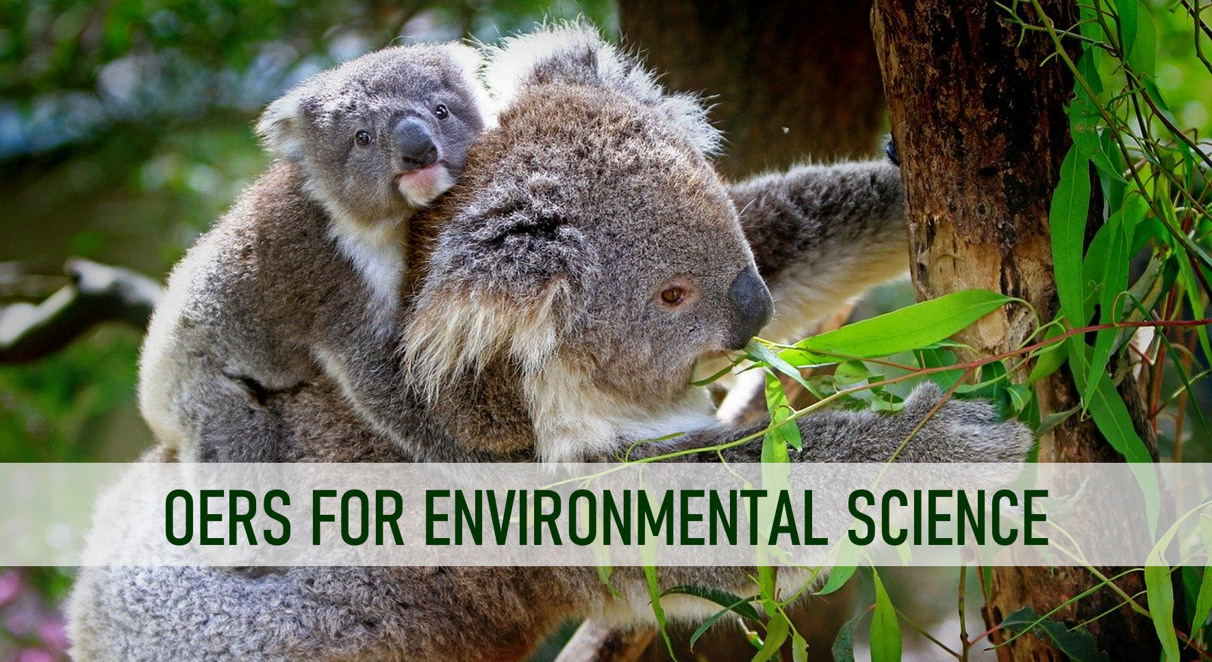 OER's for Environmental Science