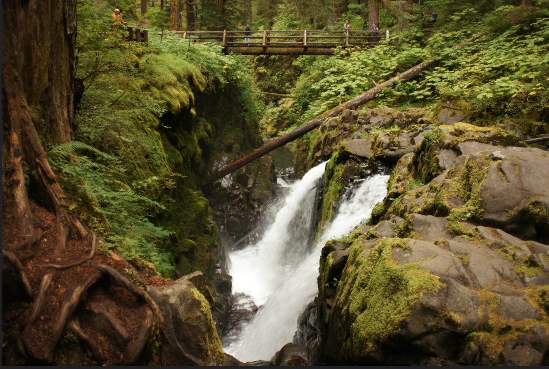 Photo of a wSol Duc Falls