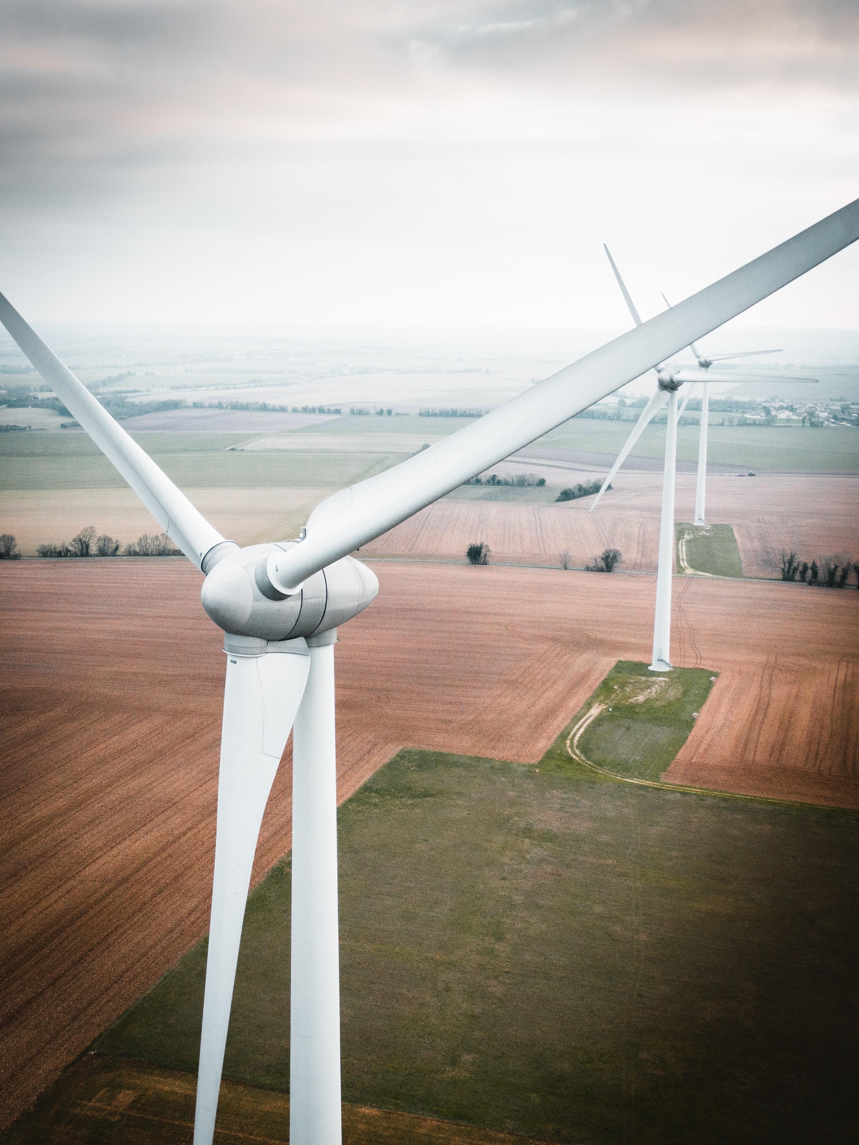 Wine turbines in a field