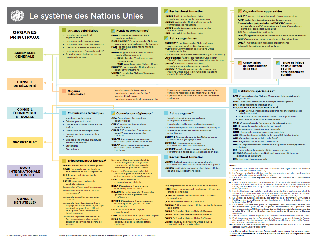 Organigramme des Nations Unies