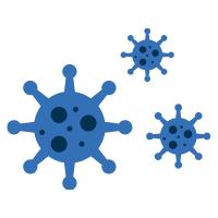 Image of a bacteria molecule