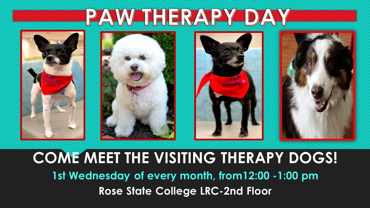 Carly & Friends Therapy Dogs