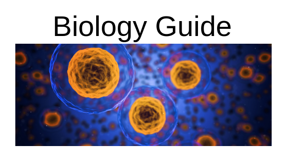 Biology Guide