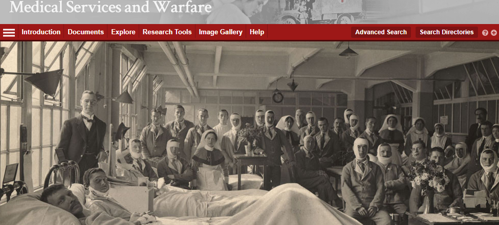 screenshot of the Medical Services and Warfare database