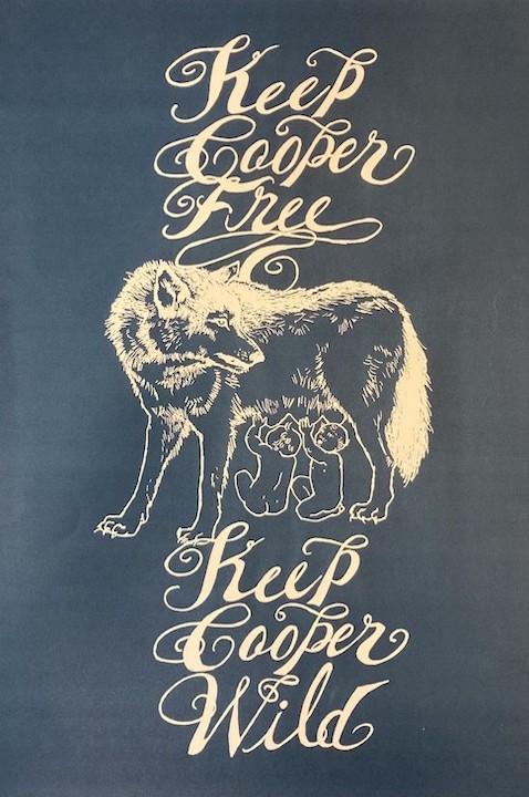 Free Cooper Union poster