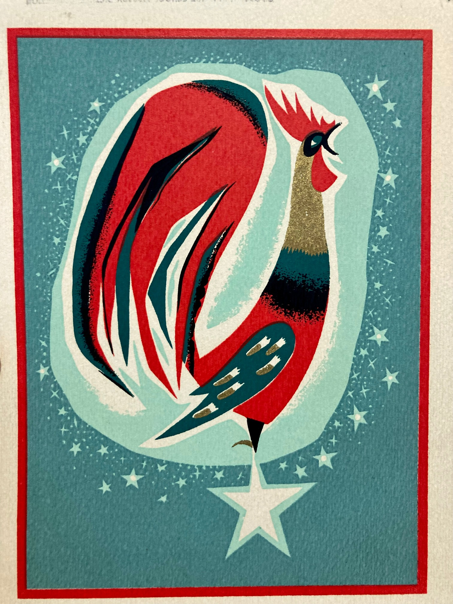 rooster - picture collection